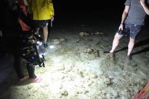 Randonnée de nuit sur la barrière de corail avec Mayotte Découverte